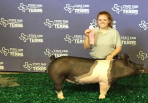 Senior, Shifflett Shows and Succeeds at the State Fair