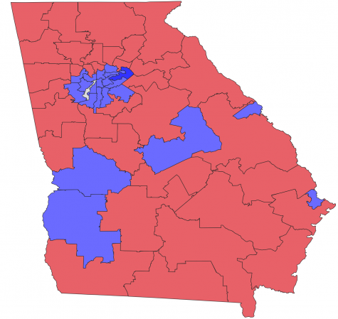 Georgia Senate election by county