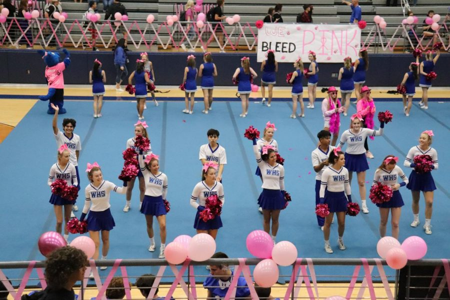 Cheerleaders Get Everyone Pumped for the Pink Out Game